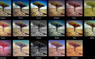 Нескучное селфи: 10 идей для фото дома, чтобы разнообразить свою страничку в интернете