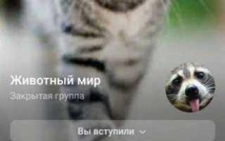 Создание чата вконтакте