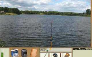 Правила рыбалки в курской области: что изменилось