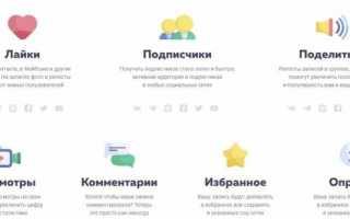 Накрутка подписчиков и лайков в тик ток бесплатно