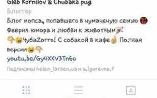 Глеб корнилов и его страницы в социальных сетях