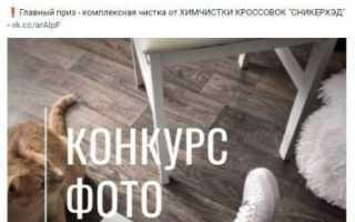 40+ лучших бесплатных и платных курсов по вконтакте